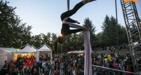 Festival-120824