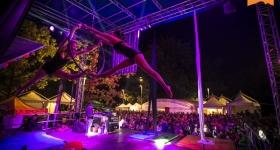 Festival-121129